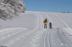 Paysage de l'Aubrac, idéal pour le ski de fond